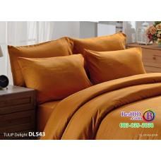 ชุดเครื่องนอนพิมพ์ลาย พื้นสีน้ำตาล Tulip Delight ผ้าปูที่นอน ผ้านวมทิวลิป ดีไลท์ DL543